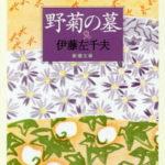 「野菊の墓」あらすじを簡単に紹介!物語のネタバレ含む小説解説
